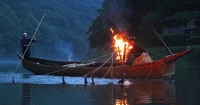Đây là cách đánh cá độc đáo giúp người Nhật được UNESCO vinh danh - Ảnh 2.