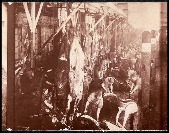Hơn 100 năm trước, người Mỹ giải quyết vấn nạn thực phẩm bẩn, giả và ngâm hóa chất thế nào? - Ảnh 4.