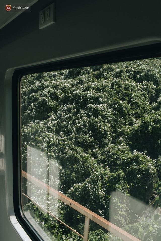 Hãy thử 1 lần đi du lịch bằng tàu hoả để tận hưởng cảm giác mùa hè lướt ngoài cửa sổ - Ảnh 17.