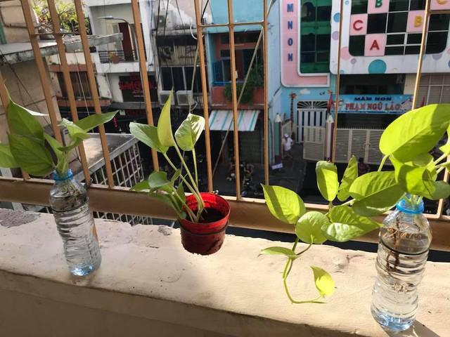 Giới trẻ Sài Gòn kiếm tiền từ cho thuê căn hộ dịch vụ trên Airbnb: Nếu nhiều phòng, lãi có thể gấp đôi gửi tiết kiệm ngân hàng - Ảnh 4.