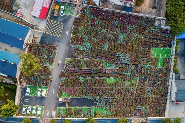 Những nghĩa trang xe đạp chi chít đến nghẹt thở chỉ có ở Trung Quốc - Ảnh 5.