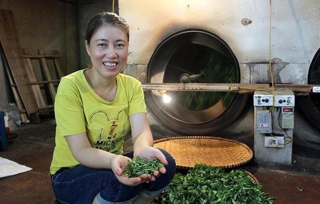 Kiếm bộn tiền từ loại trà đắt đỏ: 4 triệu đồng/kg - Ảnh 2.