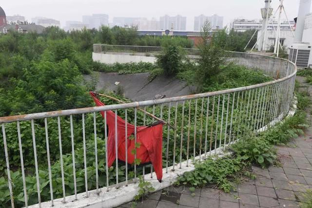 đầu tư giá trị - photo 12 15336909330091740766769 - 10 năm nhìn lại sân vận động Tổ chim Olympic Bắc Kinh 2008: Hoang tàn đến ám ảnh, niềm tự hào giờ chỉ còn là nỗi tiếc nuối