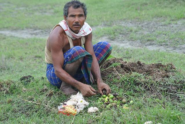 Mỗi ngày trồng 1 cái cây từ 40 năm trước, người đàn ông biến hòn đảo suýt bị nhấn chìm thành thiên đường nhiệt đới - Ảnh 1.