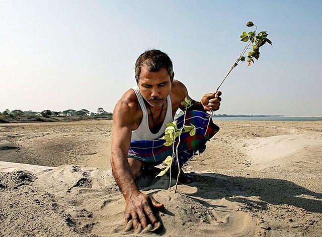 Mỗi ngày trồng 1 cái cây từ 40 năm trước, người đàn ông biến hòn đảo suýt bị nhấn chìm thành thiên đường nhiệt đới - Ảnh 5.