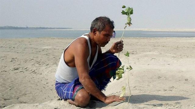 Mỗi ngày trồng 1 cái cây từ 40 năm trước, người đàn ông biến hòn đảo suýt bị nhấn chìm thành thiên đường nhiệt đới - Ảnh 7.