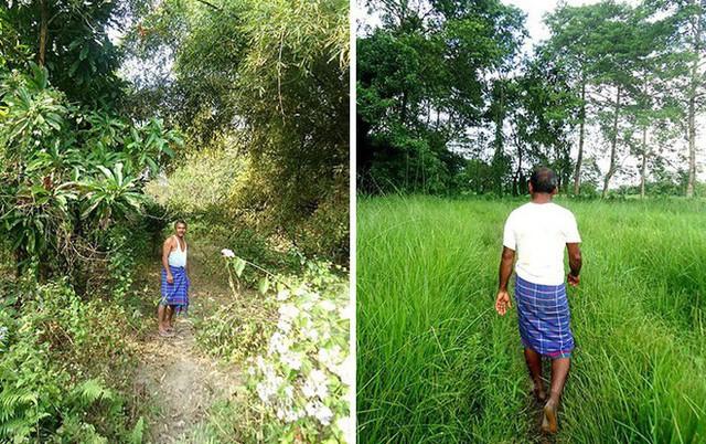 Mỗi ngày trồng 1 cái cây từ 40 năm trước, người đàn ông biến hòn đảo suýt bị nhấn chìm thành thiên đường nhiệt đới - Ảnh 8.
