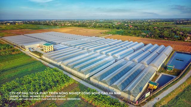 Vinaseed - Hướng đi mới của ngành nông nghiệp Việt - Ảnh 3.