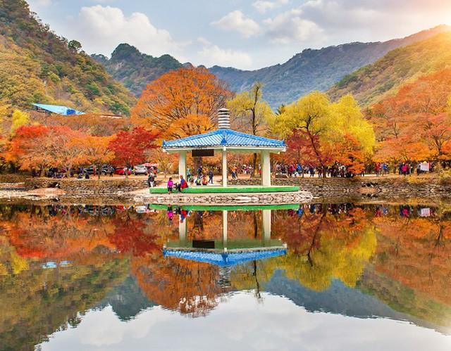 Những địa điểm ngắm mùa thu tuyệt đẹp ở châu Á - Ảnh 2.