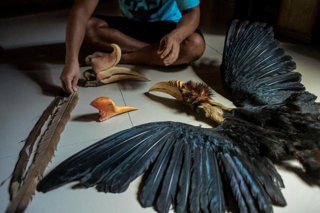 """Nước mắt chim Tê Điểu: """"Báu vật sống"""" bị săn lùng vì có chiếc mỏ đắt gấp 3 lần ngà voi - Ảnh 11."""
