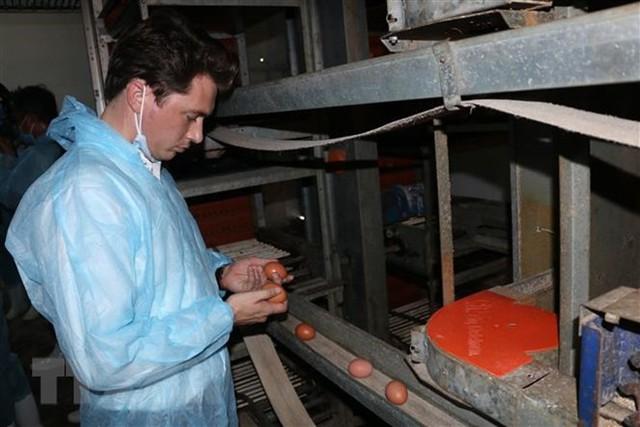 Nông nghiệp thông minh: Tạo chuỗi giá trị sản xuất khép kín - Ảnh 2.