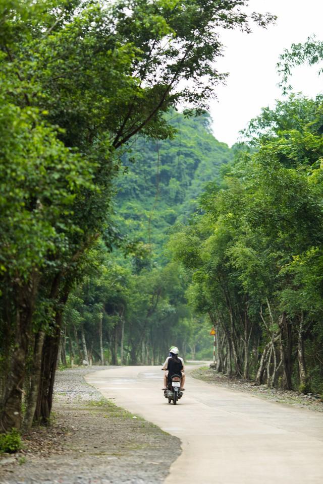 đầu tư giá trị - 156a3456 153593911631450724002 - Ngỡ ngàng cảnh đẹp ở Thung Nham Ninh Bình những ngày chớm thu