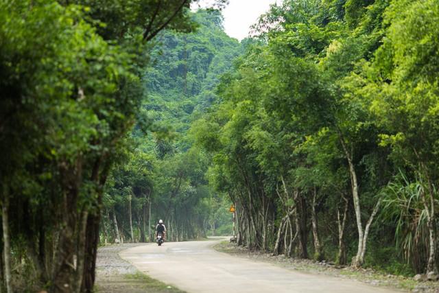 đầu tư giá trị - 156a3457 15359391163202143835021 - Ngỡ ngàng cảnh đẹp ở Thung Nham Ninh Bình những ngày chớm thu