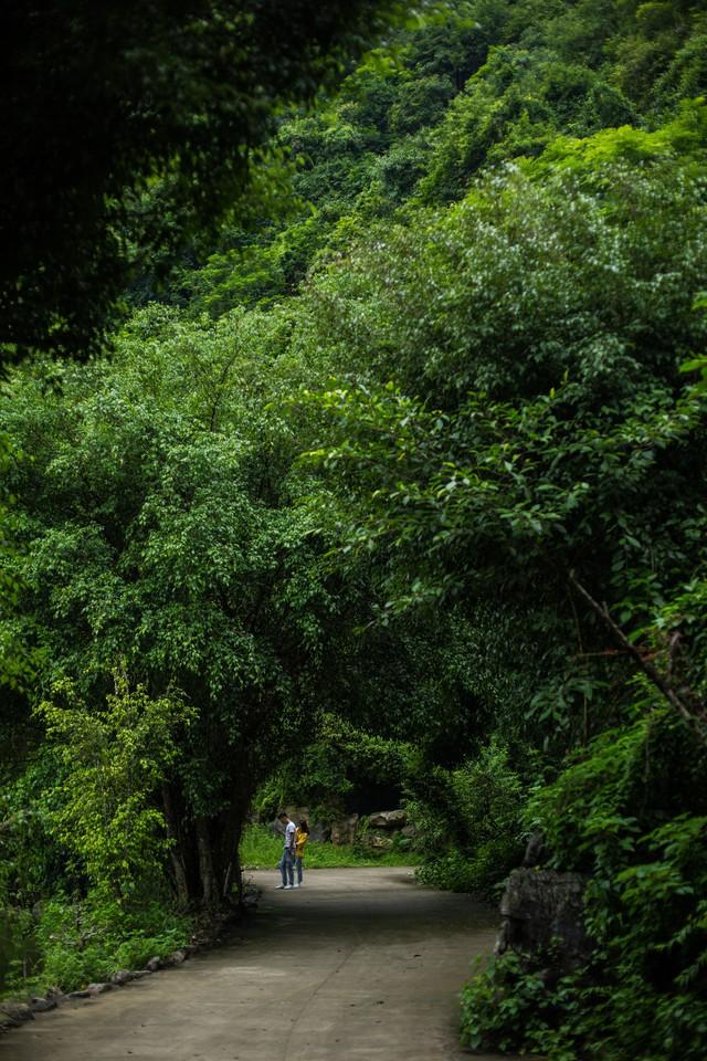 đầu tư giá trị - 156a3499 15359391163521903459866 - Ngỡ ngàng cảnh đẹp ở Thung Nham Ninh Bình những ngày chớm thu