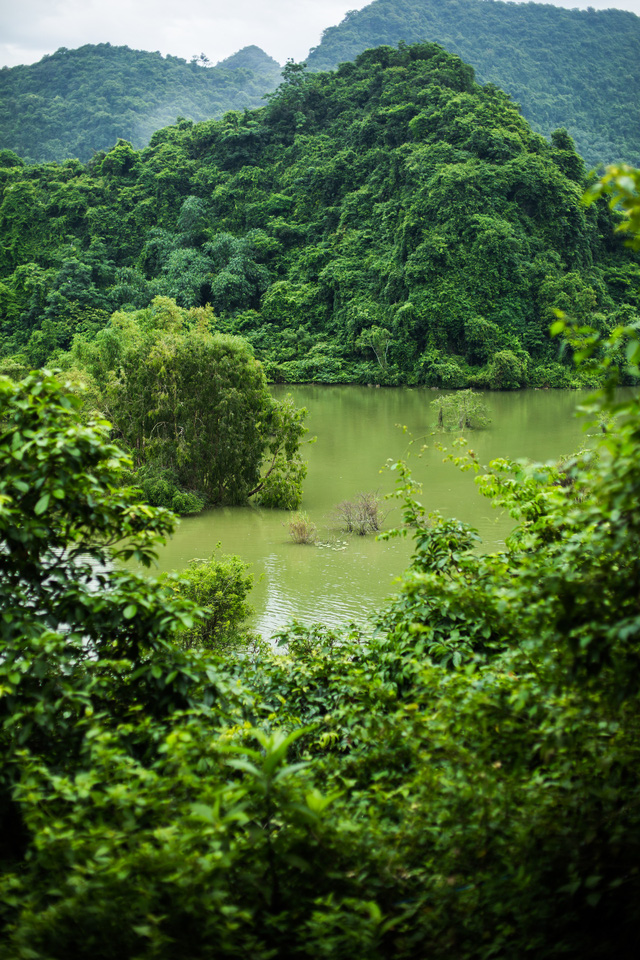 đầu tư giá trị - 156a3532 15359391164022021061737 - Ngỡ ngàng cảnh đẹp ở Thung Nham Ninh Bình những ngày chớm thu
