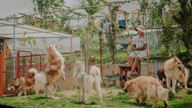 Rời bỏ phố thị, cô gái Sài Gòn lên Đà Lạt cùng bạn trai xây dựng khu vườn giữa núi rừng hoang vu dành cho thú cưng - Ảnh 2.