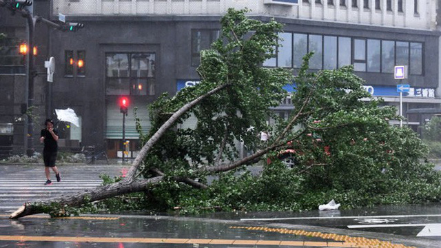 Hình ảnh có thật, nhìn như ngày tận thế trên phim: siêu bão Jebi lớn nhất trong 25 năm qua đổ bộ vào Nhật Bản - Ảnh 5.