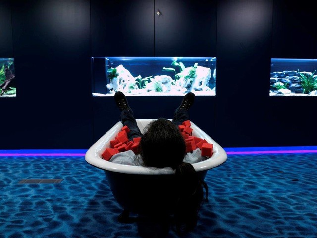 in-the-water-lounge-there-are-several-leather-loungers-and-a-bathtub-where-zooglers-can-have-a-nap-1516007471982.jpg