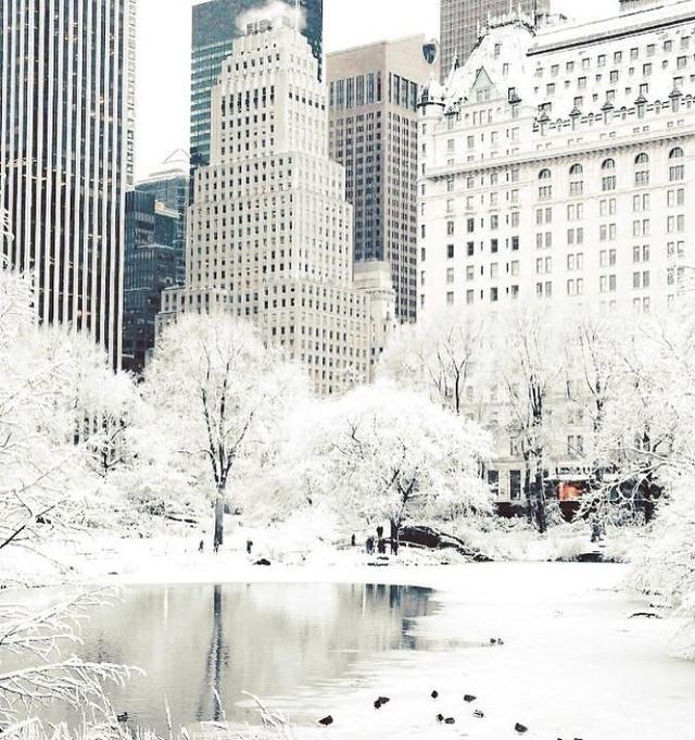 16 cảnh đóng băng giúp bạn thấu hiểu sức mạnh dữ dội của giá lạnh trời Tây - Ảnh 2.