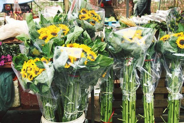 Người dân làng đào Nhật Tân: Từ giờ đến Tết mà rét thế này thì đào không nở hoa kịp mất! - Ảnh 12.