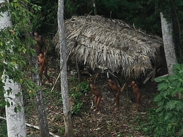 24 bức ảnh cho thấy rừng Amazon từ lá phổi xanh của thế giới đã trở thành chứng tích cho sự tàn phá của con người - Ảnh 14.
