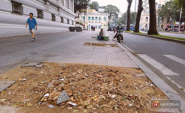 Chùm ảnh: Người Sài Gòn đặt hoa hồng trên gốc những hàng cây xanh bị đốn hạ ở đuờng Tôn Đức Thắng - Ảnh 14.