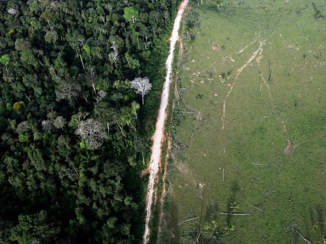 24 bức ảnh cho thấy rừng Amazon từ lá phổi xanh của thế giới đã trở thành chứng tích cho sự tàn phá của con người - Ảnh 17.