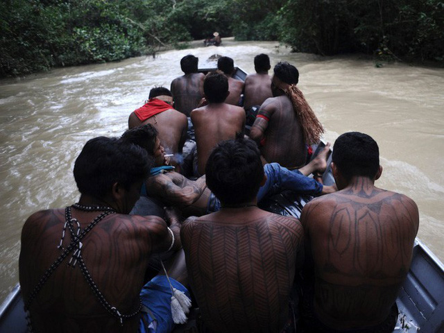 24 bức ảnh cho thấy rừng Amazon từ lá phổi xanh của thế giới đã trở thành chứng tích cho sự tàn phá của con người - Ảnh 21.
