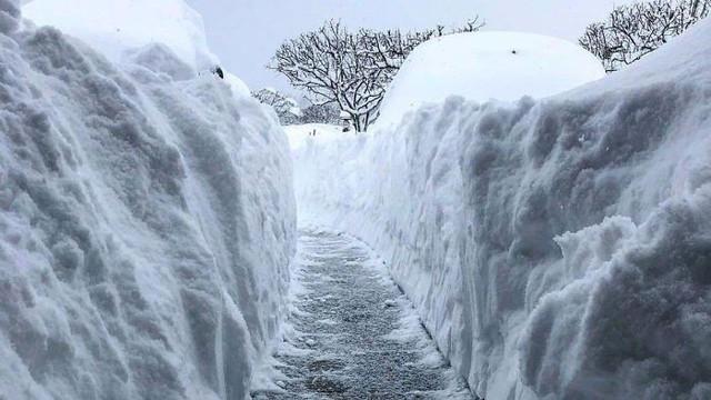 16 cảnh đóng băng giúp bạn thấu hiểu sức mạnh dữ dội của giá lạnh trời Tây - Ảnh 5.