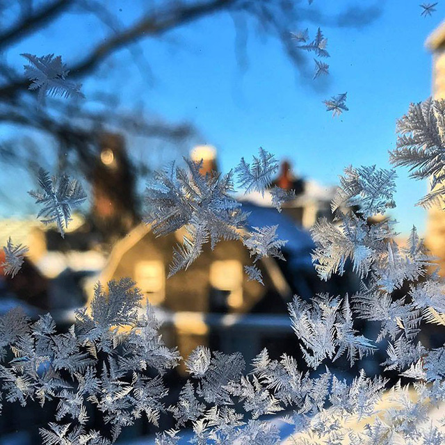 16 cảnh đóng băng giúp bạn thấu hiểu sức mạnh dữ dội của giá lạnh trời Tây - Ảnh 6.