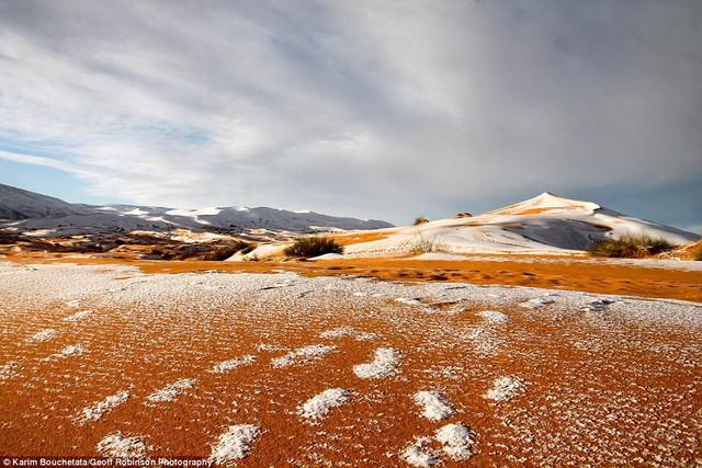 Thế giới lạnh siêu mạnh đến mức sa mạc Sahara nóng bỏng cũng bị tuyết phủ tới 40 cm - Ảnh 6.