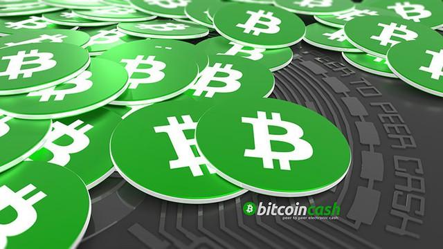 7 đồng tiền ảo đối thủ của Bitcoin trong năm 2018 - Ảnh 8.