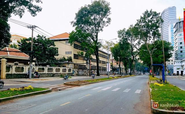 Chùm ảnh: Người Sài Gòn đặt hoa hồng trên gốc những hàng cây xanh bị đốn hạ ở đuờng Tôn Đức Thắng - Ảnh 8.