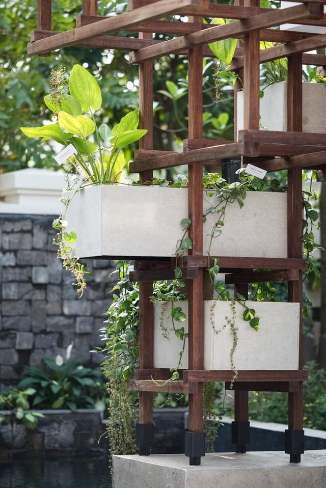 Công trình vườn - ao - chuồng của Hà Nội lên báo ngoại - Ảnh 5.