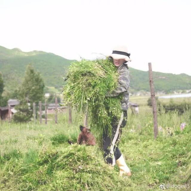 Cô gái xinh đẹp thoát khỏi trầm cảm nhờ làm vườn, biến mảnh đất 1300m² thành nơi vạn người muốn sống - Ảnh 21.
