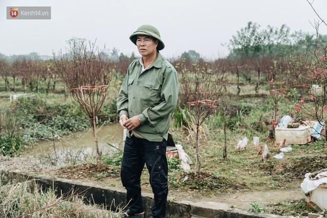 Gần 200 gốc đào của người dân Bắc Ninh bị chặt phá trong đêm: Tết năm nay còn chả có bánh chưng mà ăn - Ảnh 16.