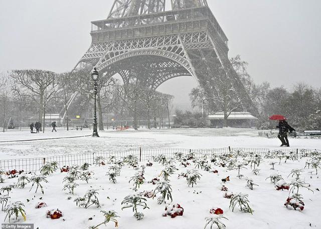Paris đón tuyết đầu mùa sau nhiều tuần căng thẳng: Kẻ lãng mạn xuống phố, người cô đơn chống chọi giá rét - Ảnh 5.