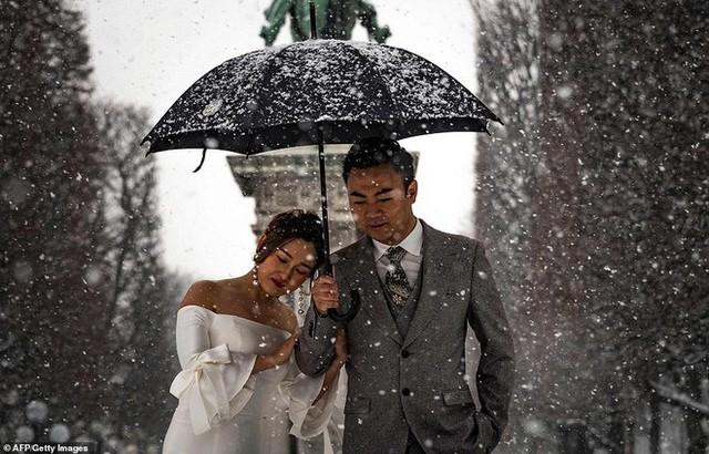 Paris đón tuyết đầu mùa sau nhiều tuần căng thẳng: Kẻ lãng mạn xuống phố, người cô đơn chống chọi giá rét - Ảnh 6.