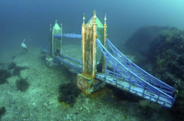 Ảnh: Kinh ngạc trước những bí mật ẩn sâu dưới lòng đại dương - Ảnh 11.