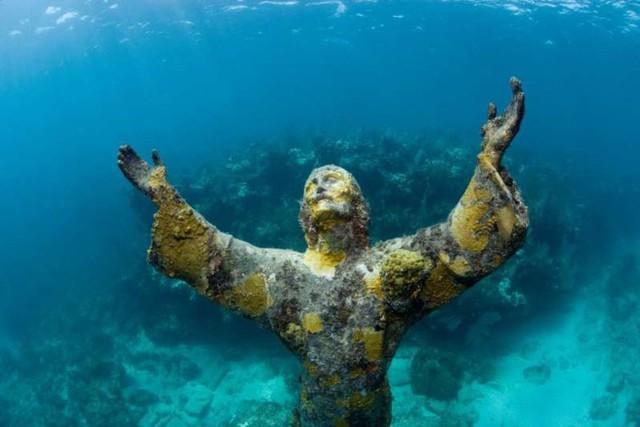 Ảnh: Kinh ngạc trước những bí mật ẩn sâu dưới lòng đại dương - Ảnh 6.