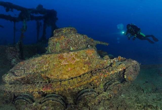 Ảnh: Kinh ngạc trước những bí mật ẩn sâu dưới lòng đại dương - Ảnh 8.