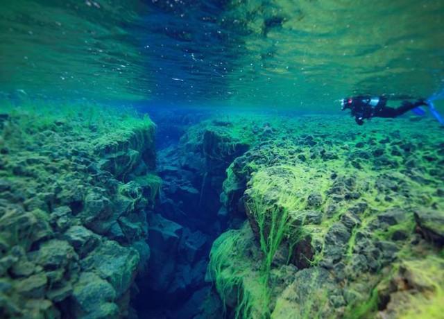 Ảnh: Kinh ngạc trước những bí mật ẩn sâu dưới lòng đại dương - Ảnh 10.