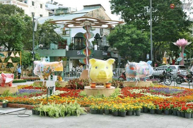 Cận cảnh đường hoa Nguyễn Huệ ở Sài Gòn trước giờ khai mạc đón Tết Kỷ Hợi 2019 - Ảnh 8.