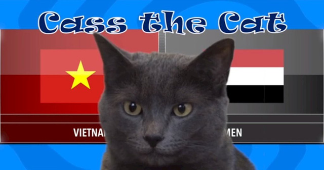 Mèo tiên tri Cass chọn Việt Nam thắng Iraq - Ảnh 1.