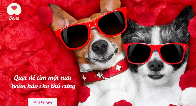 Get Bone - ứng dụng hẹn hò dành cho thú cưng đầu tiên tại Việt Nam lấy cảm hứng từ Tinder: Ý tưởng đột phá sáng tạo hay 'ăn no rửng mỡ'? - Ảnh 1.