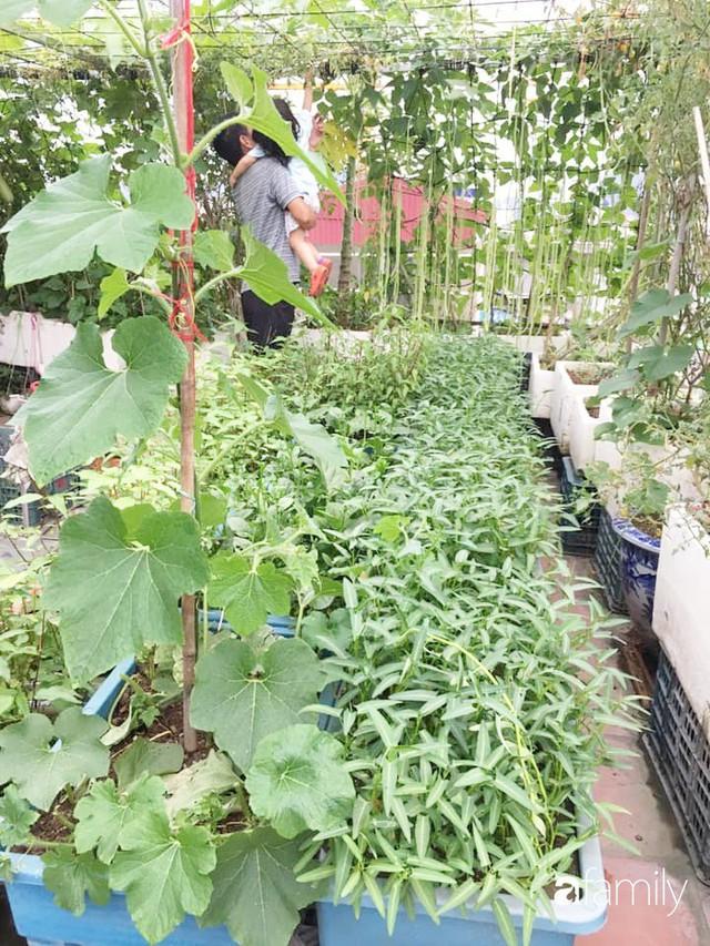 Sân thượng 40m² nhưng không khác gì một trang trại thu nhỏ của mẹ đảm ở Quảng Ninh - Ảnh 11.