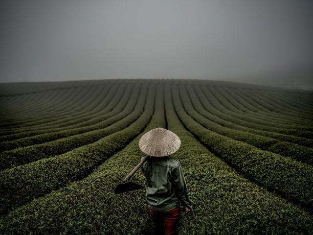 Nhiếp ảnh gia người Mỹ và mối duyên nợ với Việt Nam - Ảnh 11.