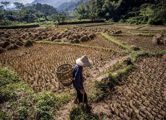 Nhiếp ảnh gia người Mỹ và mối duyên nợ với Việt Nam - Ảnh 15.