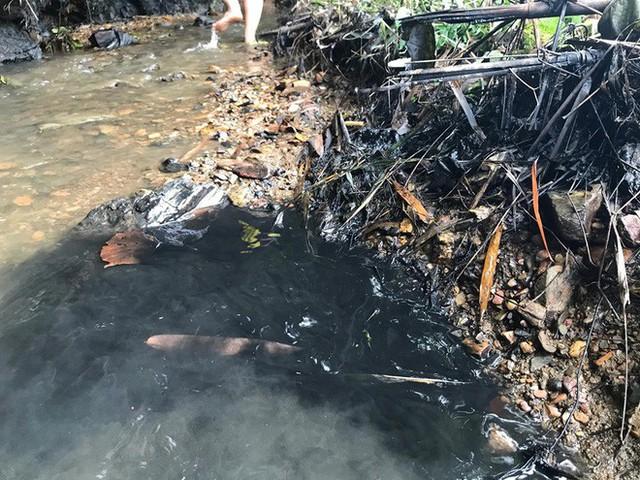 Tổng GĐ Nhà máy nước sông Đà thừa nhận có vết dầu loang và nói không bưng bít thông tin - Ảnh 1.