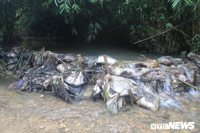 Nước sinh hoạt bốc mùi ở Hà Nội: Sau dầu thải là gì nữa? - Ảnh 2.